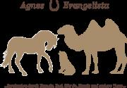 Agnes Evangelista Tiergestuetzte Therapie